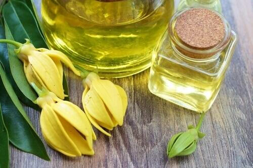 pure Ylang-Ylang essential oil